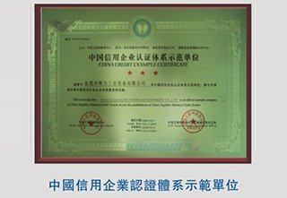 China credit enterprise certification system demonstration units